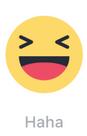 Reactions - Haha