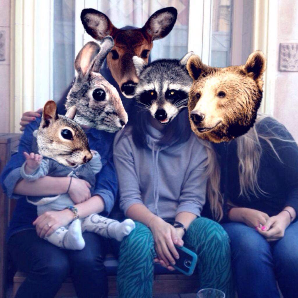 App Facce Animali