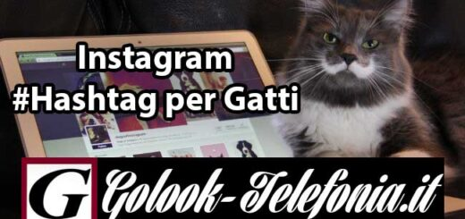 Instagram hashtag gatti