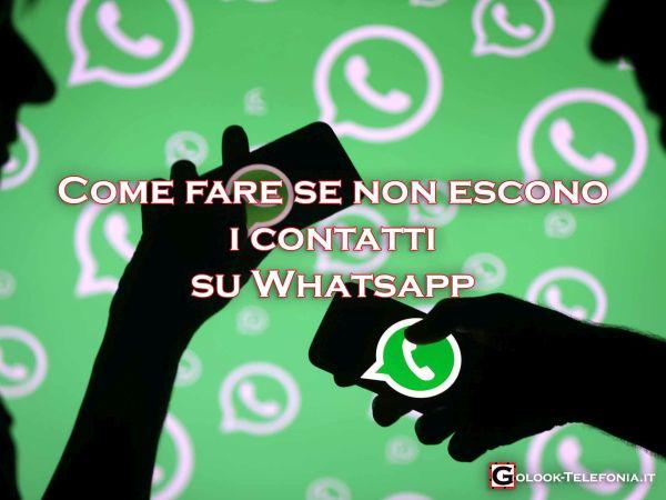 whatsapp non escono i contatti