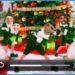 Video personalizzati per Natale? L'app per inserire le vostre facce su degli elfi ballerini su Android e iPhone